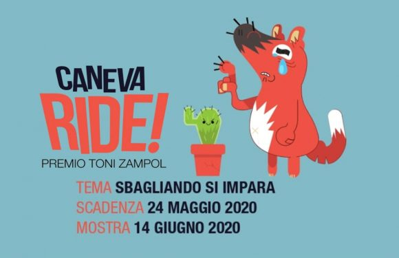 International Cartoon Contest Caneva Ride 2020, Italy – Winners